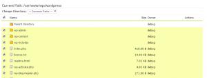 WordPress bulk selection files in the control panel.